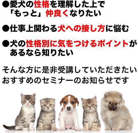自分と愛犬の性格のタイプ診断_エニアグラム
