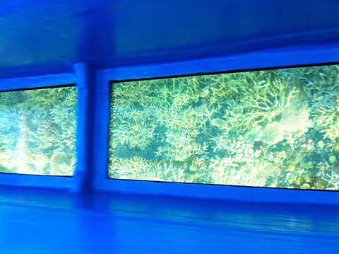 宮古島のグラスボートでサンゴ礁鑑賞
