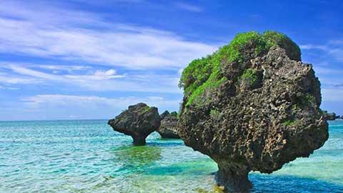 自然の神様に愛された大神島の奇石