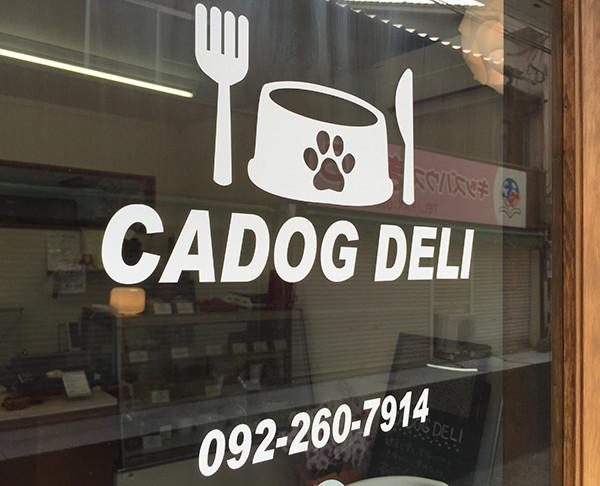 博多の愛犬・愛猫のための手作りフードのお店 CADOG DELI さんで、須崎動物病院 福岡移動式診療所開催中