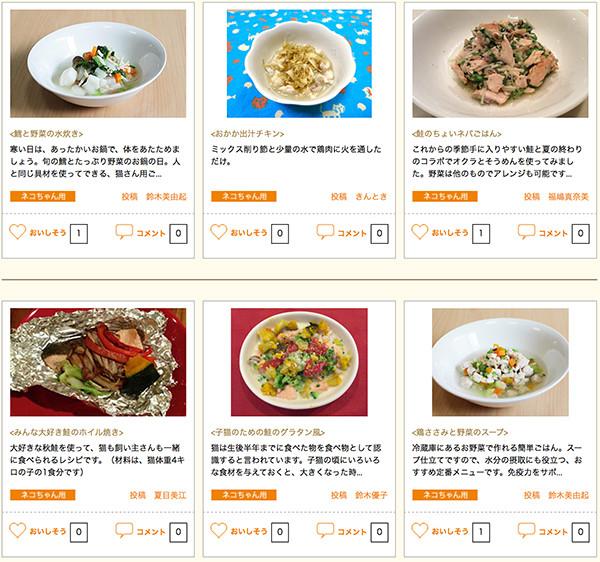 GEX社のラクック特設サイトにペット食育協会(APNA)が猫の手作りご飯レシピを提供し、須崎恭彦が監修