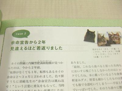 Bk_cat_1012_natsume02